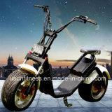 2017アルミニウム都市ココヤシの電気スクーターはとの電池を除去する