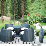 Meubles occasionnels de jardin d'hôtel extérieur gris moderne de terrasse