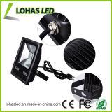 Colorare indicatore luminoso esterno bianco IP65 10W-500W LED del proiettore di illuminazione di inondazione del LED/rosso/dell'azzurro freddo impermeabile cambiante/Green/RGB LED inondazione
