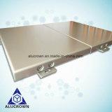 Het BuitenComité van uitstekende kwaliteit van het Aluminium van de Voorzijde van de Muur