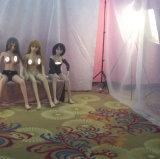 남자를 위한 실제적인 실리콘 성 인형 158cm 해골 일본 성숙한 소형 살아있는 것 같은 Anime 경구 사랑 인형 가득 차있는 질 버들강아지 큰 유방