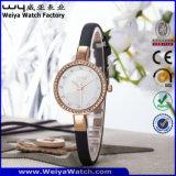 Modificar los relojes ocasionales de las señoras para requisitos particulares de la manera del cuarzo del servicio (Wy-075F)