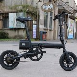 個人的な運送者のリチウム電池の折られた12inch電気自転車F1