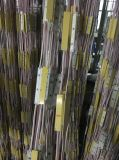 La vendita SMD5730 della fabbrica impermeabilizza il modulo ultrasonico dell'iniezione LED