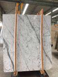 Bianco Carrara en marbre Panneau alvéolé pour revêtement de mur extérieur