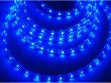 Indicatore luminoso ad alta tensione della corda di colore blu (127V/230V) con 2 anni di garanzia
