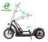 350W安く小さい折りたたみの電気バイク、安い電気自転車