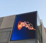 Périmètre extérieur Affichage de panneaux à affichage LED