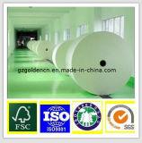 papier de panneau 190GSM-400GSM en ivoire/Fbb