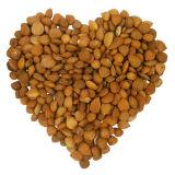 Cápsula de la vitamina B17 de la alta calidad en venta