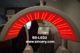Terapia da luz infra-vermelha do diodo emissor de luz do profissional PDT