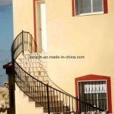 Het het duurzame Balkon van het Smeedijzer & Traliewerk van de Trede