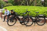 アルミニウム都市セリウムの電動機力のEbike電池のバイク