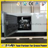 Générateur de gaz naturel de 30 kilowatts