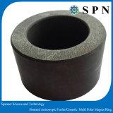 De permanente Ceramische Ferriet Gesinterde Ringen van de Magneet voor Micro- Motor