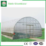 Invernadero plástico del marco de acero de la agricultura para los vehículos