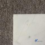 Het opgepoetste Natuurlijke Witte Marmer van Carrara