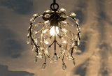 Illuminazione di cristallo della lampada del lampadario a bracci del soffitto del mini metallo della candela del ristorante dell'hotel nel nero/colore Bronze