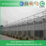 農業のためのVenloのタイプガラス温室