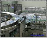 500ml 병 20000b/H 물 채우는 플랜트