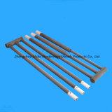 Fuente principal W Tipo Sic Rod Calefacción elemento
