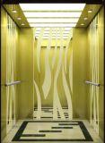 Lift/de Lift van de Villa van het Huis van de Technologie van Italië de Professionele Hydraulische (rls-241)