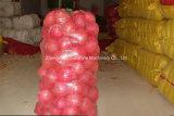 Knoblauch-Kohl-Karotte-grüner Pfeffer-Bohnen-Äpfel gesponnene Polypropylen-Beutel