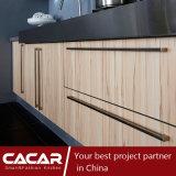 Green Garden Fresh Naturaleza de madera sólida de la laca Gabinete de cocina (CA09-10)