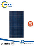 310W-320W 다결정 태양 전지판 가격 인도