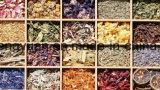Spitzenverkaufentrockner für Obst- und GemüseChrysantheme