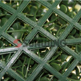 Il giardino protegge la barriera artificiale dell'EDERA della stuoia decorativa del Boxwood