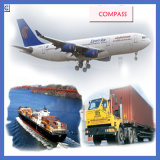 Контейнер для перевозок From Китай FCL и LCL к Tunis (IC2-1)