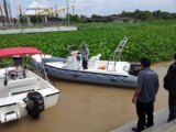 Liya Boat Manufacturer Rigid Hull 6.6m Hypalon Fiberglass Boat (HYP660)
