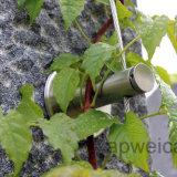 Maglia della corda d'acciaio per la pianta verde