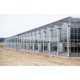 Ventilator van de Uitlaat van de Ventilator van het KoelSysteem van de ventilatie de Industriële