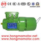 motor de In drie stadia van de 4pole0.37kw AC Rem (712-4P-0.37KW)