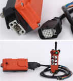 6 knopen Industrial Radio Remote Control System voor Crane (f21-c-E1Q)