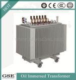 Fase de tres transformadores de distribución de la Junta Oil-Immersed 0.4kv 6.6kv 11kv 24kv 35kv 30kVA ~ 3500kVA.