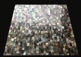 De zwarte Zwabber Shell 10*15 Msoaic van de Lip
