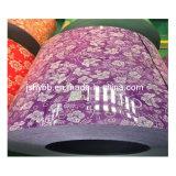 Lindo design flores PPGI bobinas de aço da China