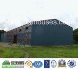 Grosses Cubage Stahlkonstruktion-Geflügelfarm-Haus