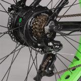 Verde Litio Poder Eléctrico de la Bici con Freno de Disco Seguro