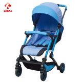 Carrinho de criança de bebê com assento do frame +Regular