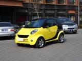 Маленький 2 СИДЕНИЙ Car электрический Smart Car