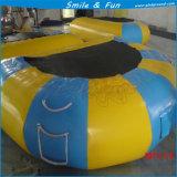 De Opblaasbare Trampoline van uitstekende kwaliteit van de Pool met de Dekking van de Tent voor Verkoop