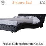 현대 작풍 가죽 침대 1109년
