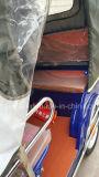 環境のBicycal 4の乗客850W電気Trikeの熱い販売