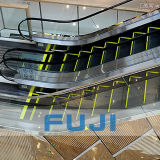 Escalator chaud de vente de FUJI pour les stations de souterrain et de train