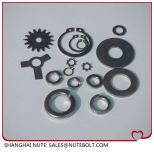 Rondelle ressort en acier inoxydable/DIN127/l'unc/Bsw/ASTM SAE USS #4 #6 #8 #10 #12 1/4 à 3