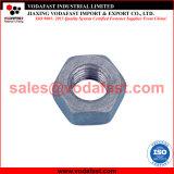 La norme ISO 4033 Haute résistance élevée à six pans de l'écrou hexagonal
